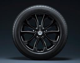 Juke 15RX V selection Style Black package