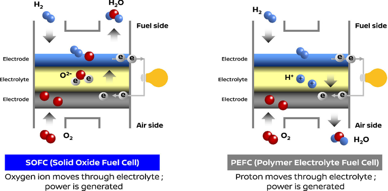 solid oxide fuel cell thesis Modeling and simulation of jp-8 fuel based hybrid solid oxide fuel cell system by kalyan nishtala a thesis submitted in partial fulfillment of.